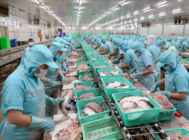 Xuất khẩu thủy sản quý II/2021: Nhận định từ góc độ thị trường