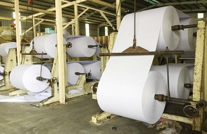 Dự báo xu hướng giá thị trường giấy và bột giấy giai đoạn 6 tháng đầu năm